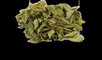 tinnitus ingredients buchu leaves