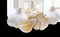 tinnitus ingredients garlic