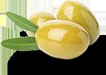 tinnitus ingredients olive leaf